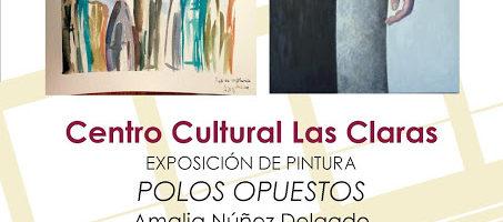 Exposición 'Polos opuestos'