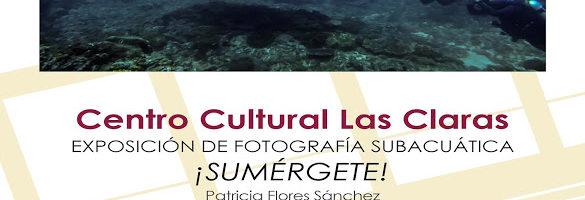 Exposición de fotografía subacuática ¡Sumérgete!