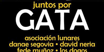 Gala benéfica 'Juntos por Gata'