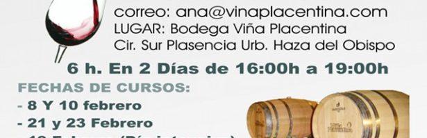 Ciclo de cursos de cata de vinos