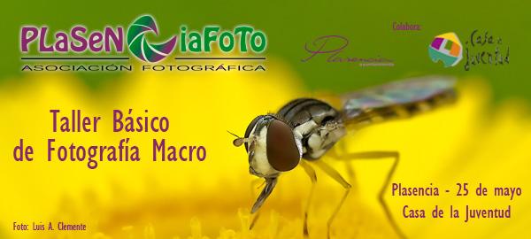 2013-plasencia-foto-taller-macro