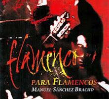 Presentación del libro 'Flamenco para flamencos'