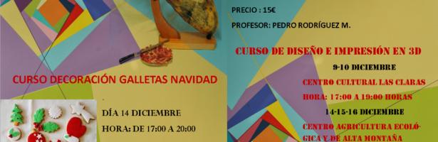 Talleres Navideños de la Universidad Popular de Plasencia